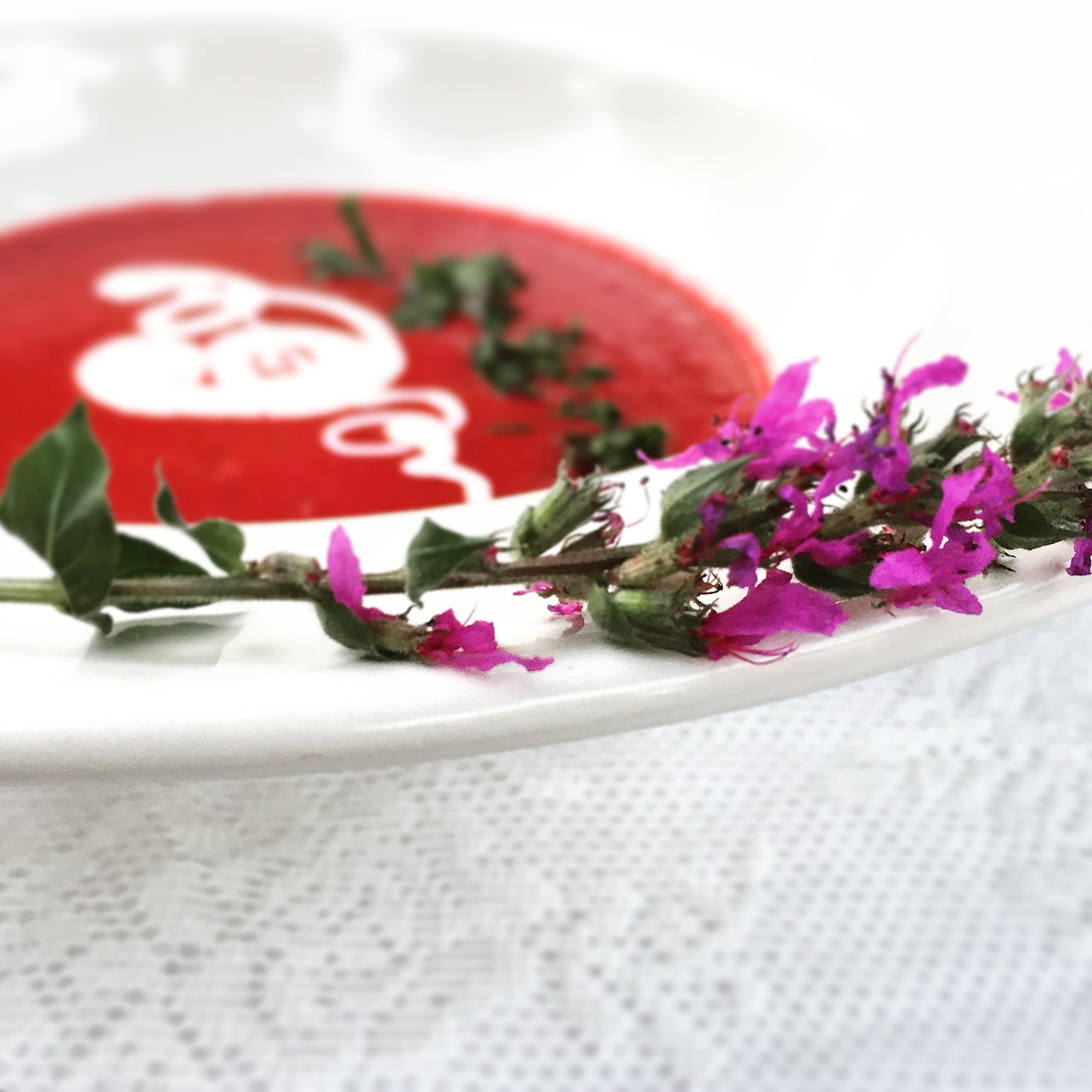 Foodfotografie food styling1